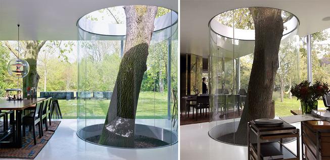 architecture-around-the-trees-6__880