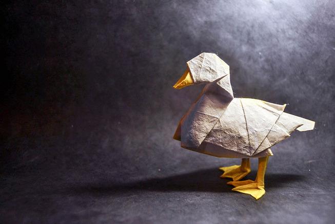 origami-gonzalo-garcia-calvo-40-57fb55e981120__880