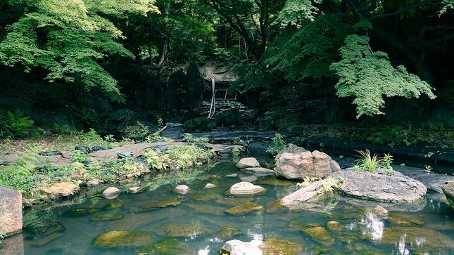 03 - Tokyo - Koishikawa Korakuen Gardens