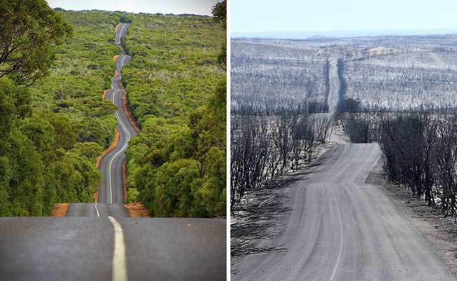 australia-bushfires-before-after-photos-23-5e15e3417506e__700