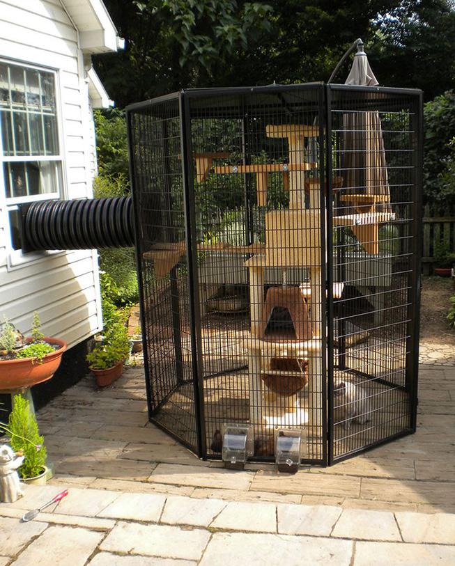 catios-cat-patios-outdoor-enclosures-9-5cf62f59d3f84__700