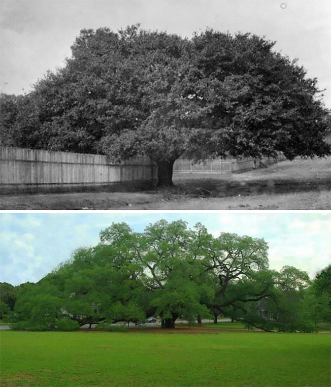 before-after-old-photos-real-life-45384-6151d5f42d35c__700