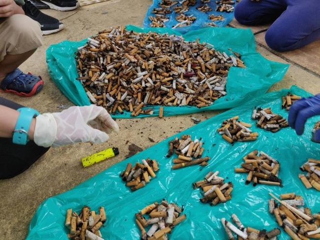 cigarette_butt_putrajaya_2905