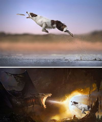 funny-photoshop-battle-winners-259-5a63bd59c9b19__700