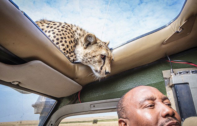 only-in-africa-11