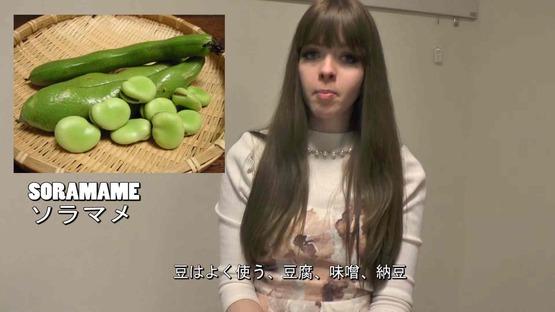 日本の野菜事情 海外の反応 (20)