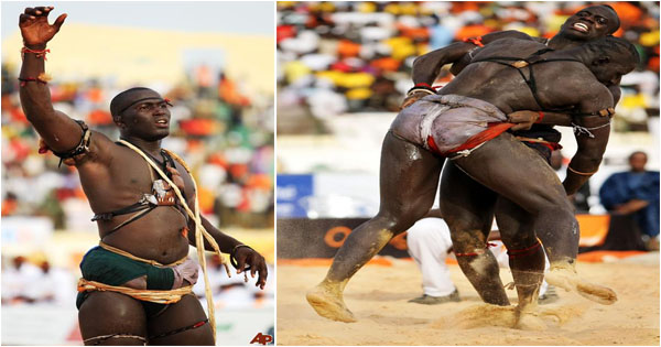 la-lutte-senegalaise-sport-senegal