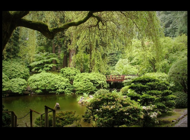 japanese_garden_by_natronics