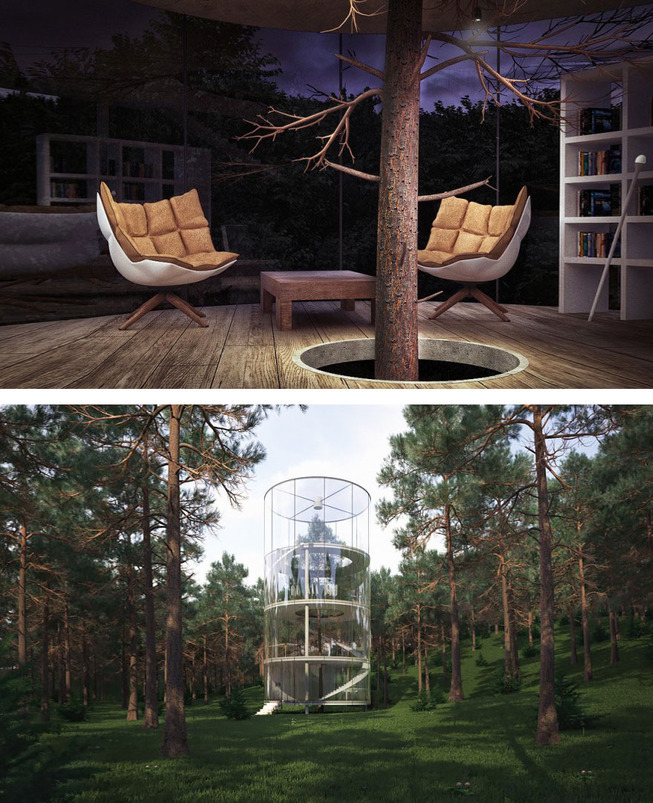 architecture-around-the-trees-3__880 (1)