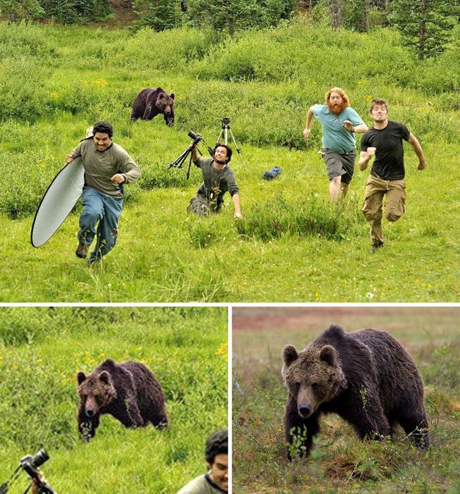 fake-news-photos-viral-photoshop-101-5c7005594a021__700
