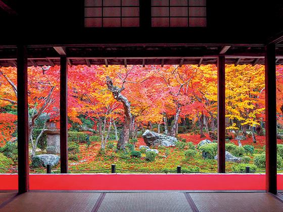 kyoto_pic01