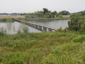 小目沼橋 (1)