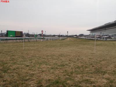 中山競馬場 (4)