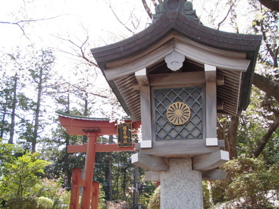 弥彦神社 (3)