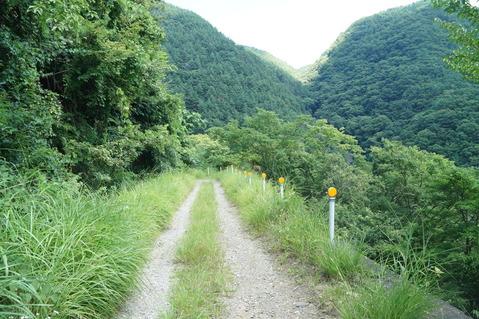 甲府精進湖線 (14)
