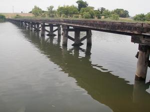 小目沼橋 (4)