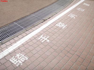 中山競馬場 (8)
