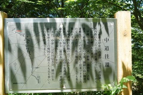 甲府精進湖線 (11)