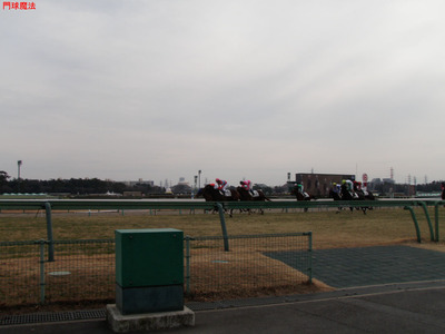 中山競馬場 (2)