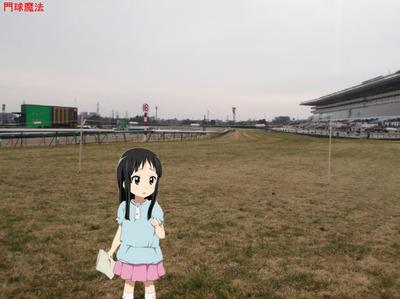 中山競馬場 (9)