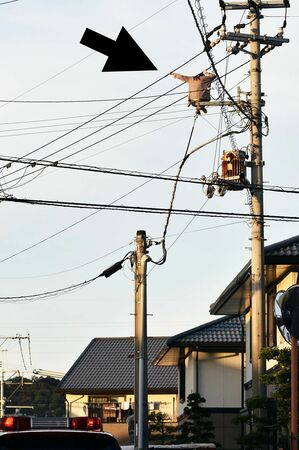 tokushima.ismcdn.jp_mwimgs_7
