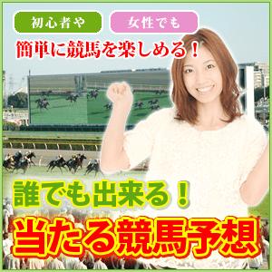 banner6
