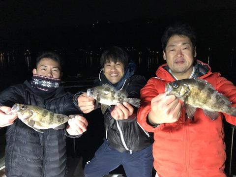 メバル釣果2