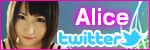 Alice on Twitter