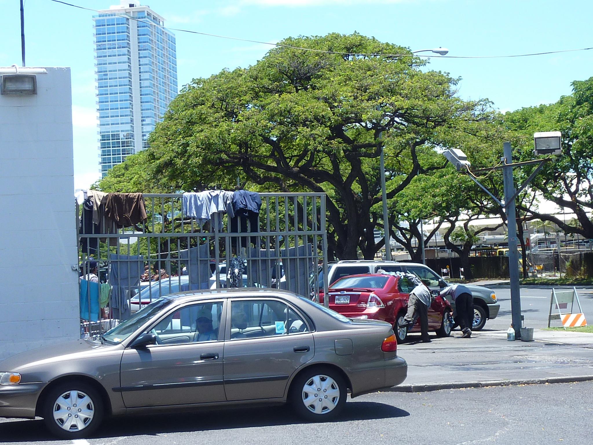 Plumeria*time:*Mckinley Car Wash(Hawaiiで洗車)