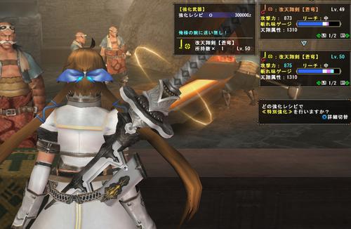 290806_改天翔剣レベル50強化
