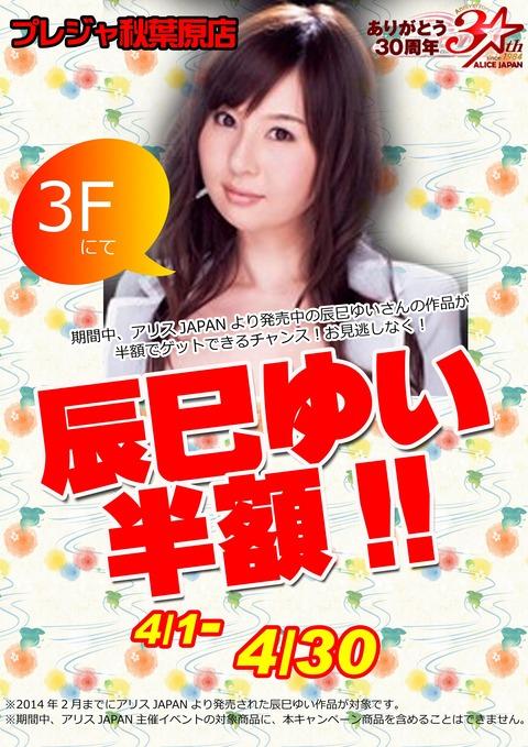 201404辰巳のコピー