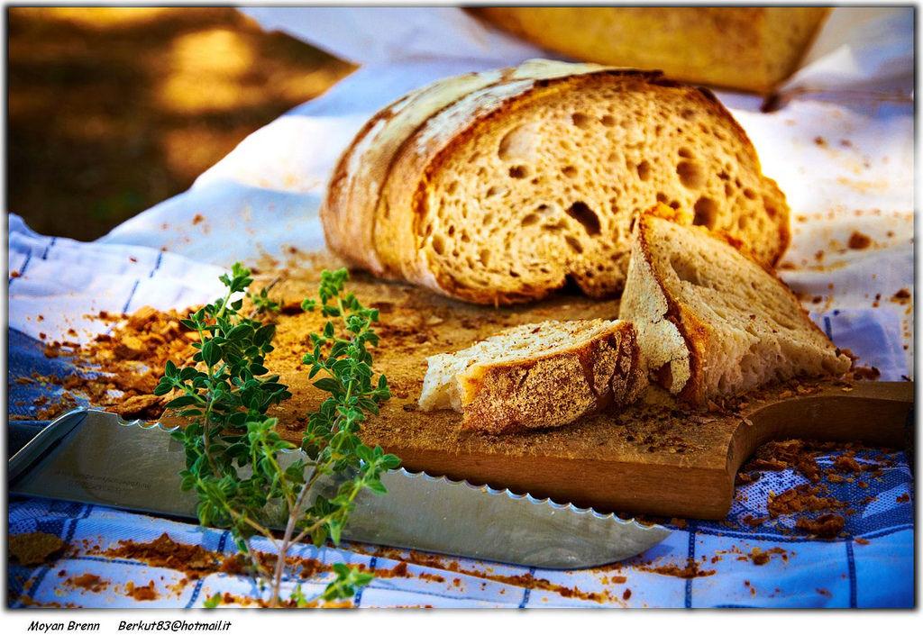 Bread By Moyan_Brenn (I'm Back)