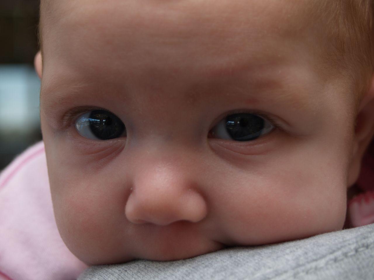 baby bentrup By paparutzi
