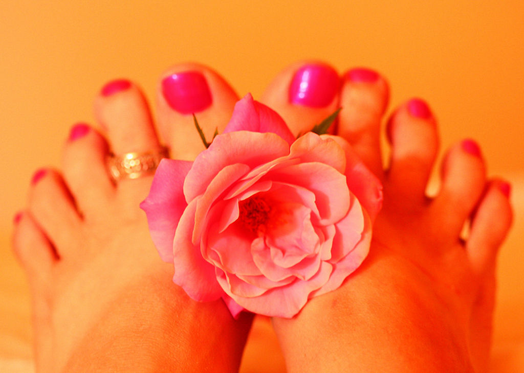 Woman's Feet Holding Pink Rose Fresh Pedicure By Pink Sherbet Photography