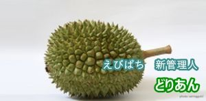 20101221-durian1