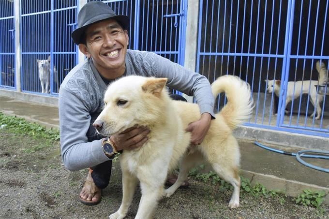 【(∪^ω^)】バリ島原産「キンタマーニ犬」をブランド化へ インドネシア、観光資源へ 「人間に忠実な性格」