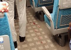 【衝撃】東海道新幹線「のぞみ265号」12号車、男がナタで4人さす 男性1人死亡、女性2人重傷 男(22)逮捕「殺意をもってさした」