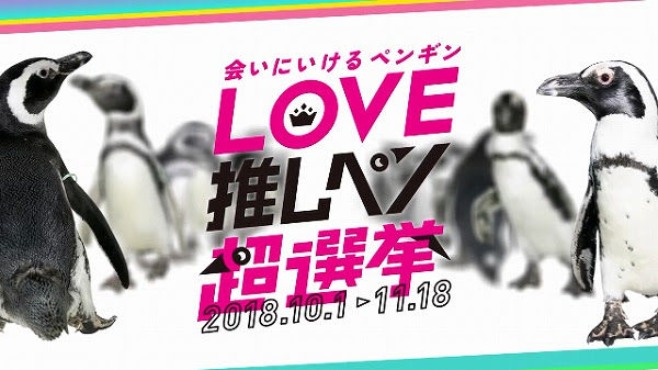【推しペン】水族館が「会いに行けるペンギンアイドルユニット」をデビューさせる暴挙!総選挙まで開催wwww