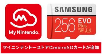 去年俺「Switch用に128GBのSDカード買おwwwwwうはwwwwこれで無敵wwww」