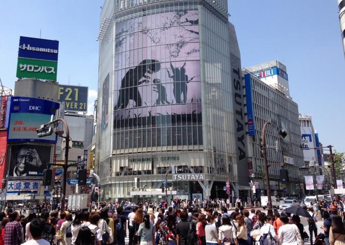 渋谷スクランブル交差点を無免許で突き進んだ車 21歳男逮捕 「パニックになり信号無視をしたが、仮免許を持っていたので無免許でないと思った」