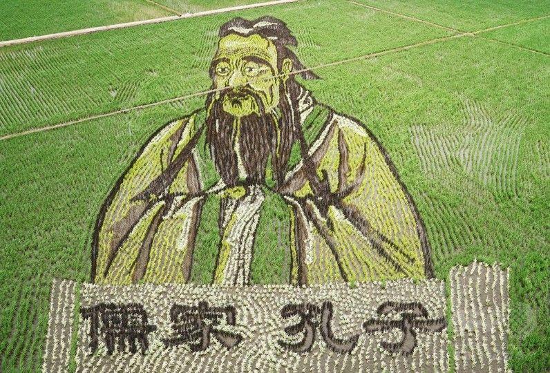 【画像】中国で話題の「千手観音」や「孔子」の田んぼアートが凄いwwww
