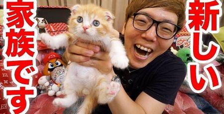 【悲報】ヒカキンさん、ネコを遊ばせるだけで2600万再生も稼いでしまう