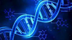 なんか「結局生まれ持った遺伝子でほぼ決まるよね」みたいな空気強まってない昨今?