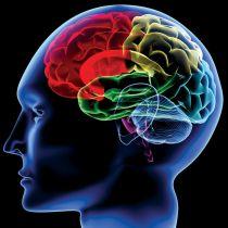 【研究結果】やらなきゃやらなきゃ……ついつい後回し 理由は脳に?