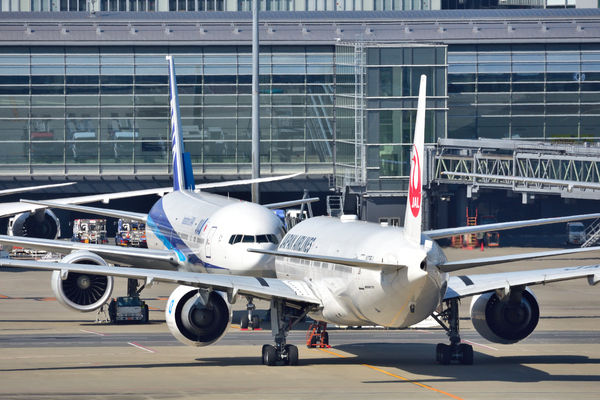 【悲報】関西空港に残された8000人、「おれらは動物ちゃうぞ!」と動物のように吠えまくる