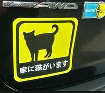 【謎】車の「家に猫がいます」謎ステッカー どうでもいい情報ではなく意味が…「事故などあったら猫を保護してほしい」
