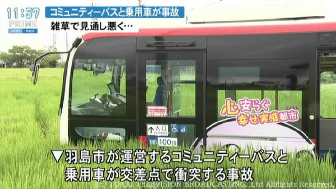 【悲報】雑草で見通しが悪く事故った車とバスの事故現場が悲惨