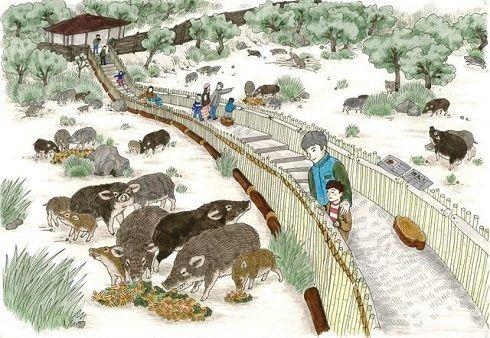 日本一客が来ない動物園がクラウドファンディングを開始wwww 「4000万円集まったらイノシシ牧場を作るんだべ」