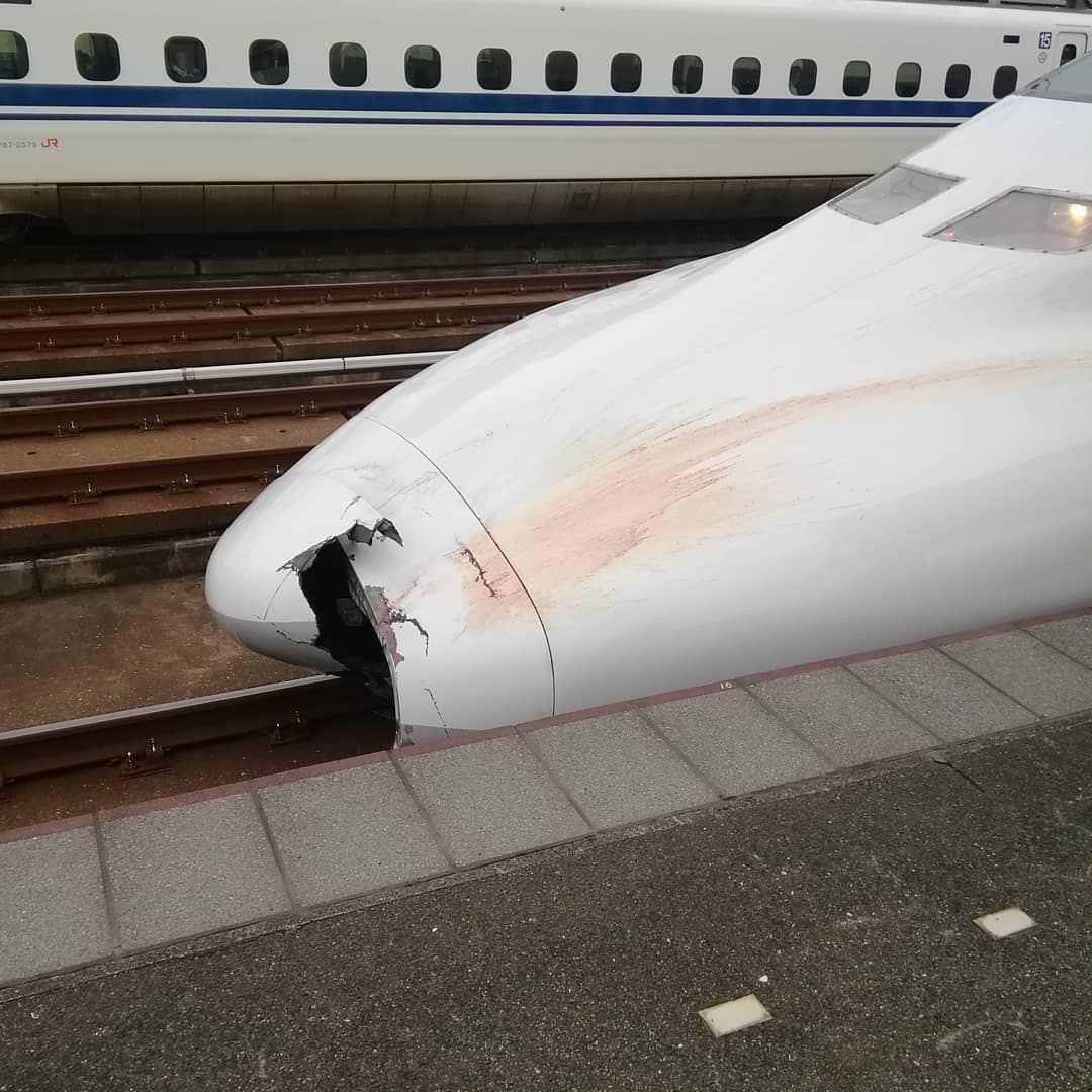 【悲報】山陽新幹線人身事故、死体が広範囲に散乱して回収に時間がかかる