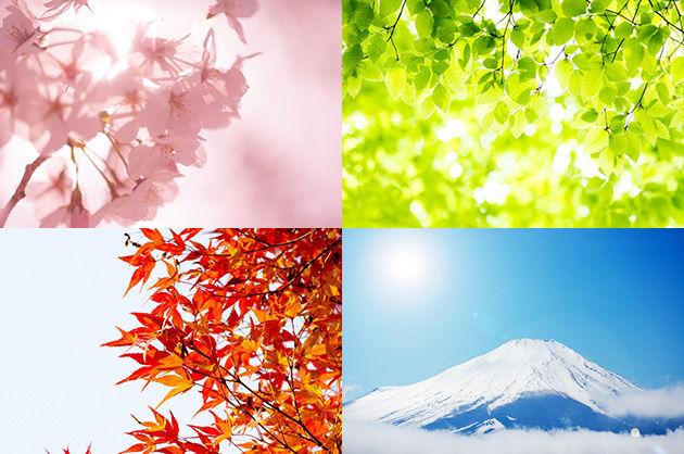 季節の変わり目が「匂い」で分かる人が世の中には一定数いる事実